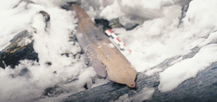 Wikinger-Ski